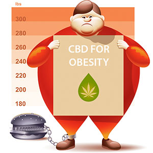 Will CBD oil have the power to treat obesity